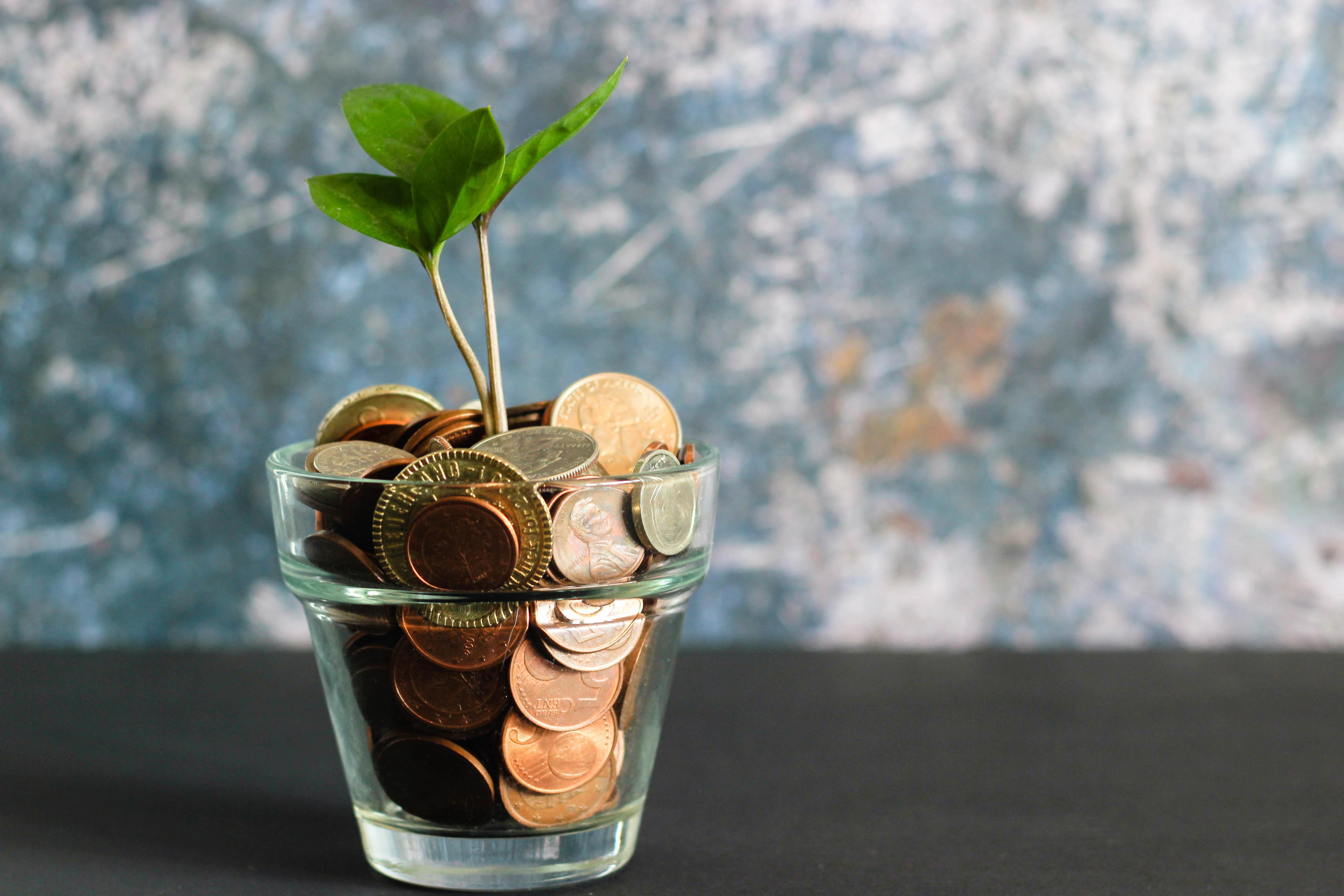 U.S.VETS Career Development Veteran Budgeting & Financial Literacy Workshop